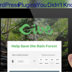 5 Unique WordPress Plugins You Didn't Know Existed